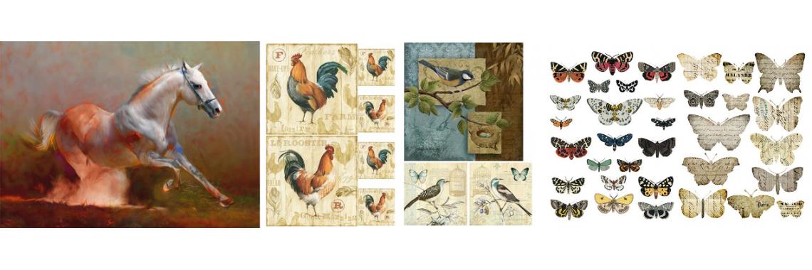 Животни & Птици